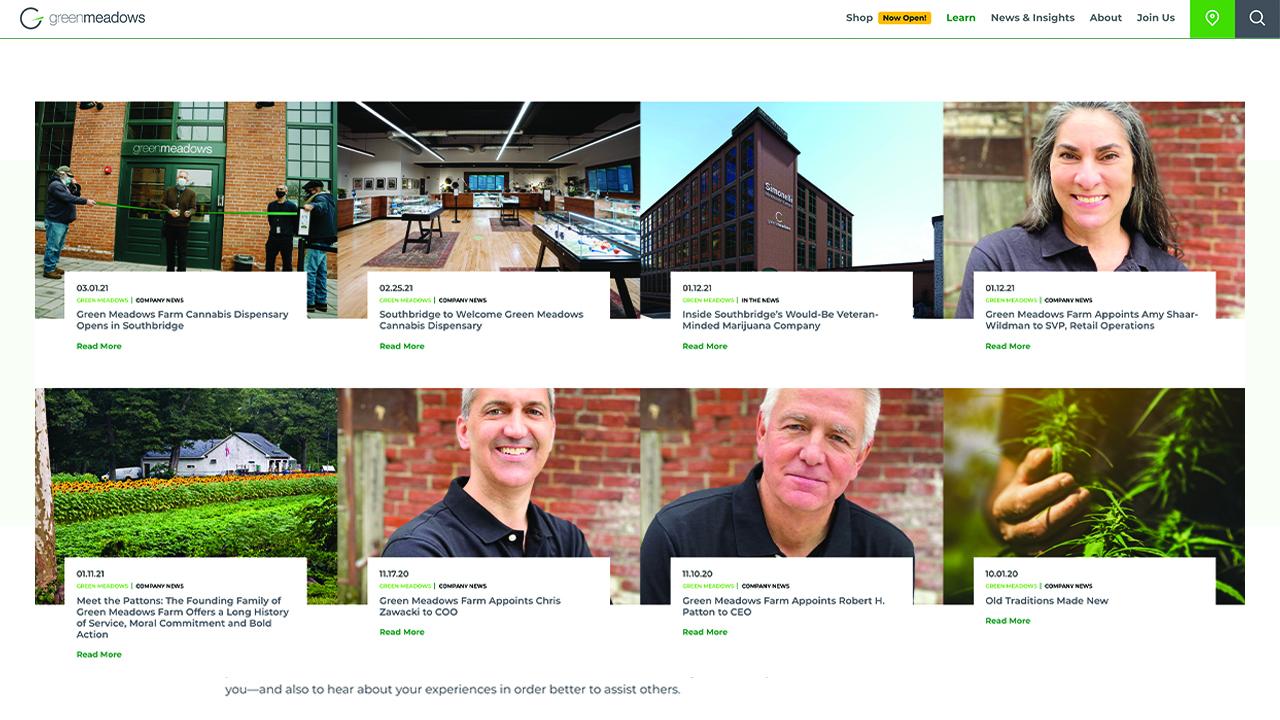 Greenmeadows_webstills_blog